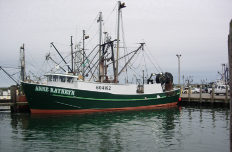 "OUT TO CATCH THE LAST FISH? Fisheries ""expert's"" anti-fisherman rhetoric gets taken to task!"