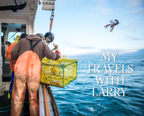 My travels with Larry