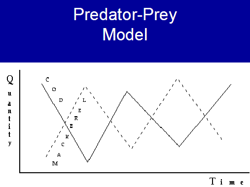 predator prey model