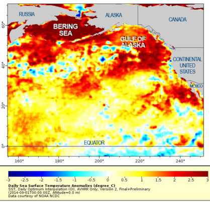 Pacific warming water