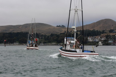 Salmon-fishing-Boats