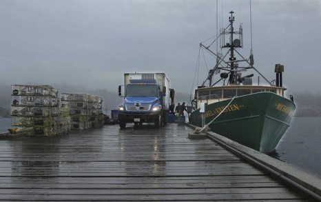Fishermen unload their catch from the Gloucester-based Michael & Kristen,
