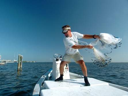 Commercial fisherman Kenny Jenkins prepares to throw a cast net on a school of mullet near a dock on Longboat Key.