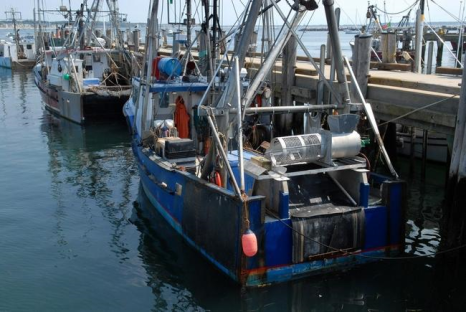 'The Long Haul' looks at the future of Cape fishing