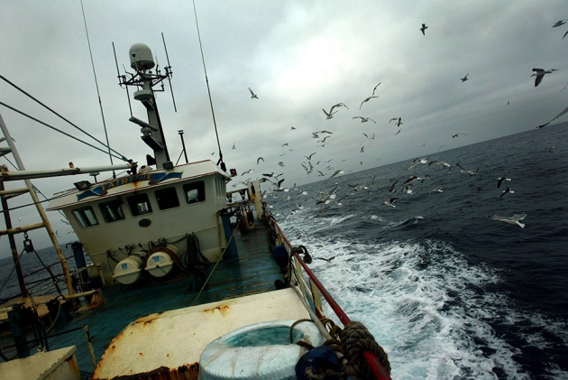 Trawling should be restricted below 600 metres, research suggests