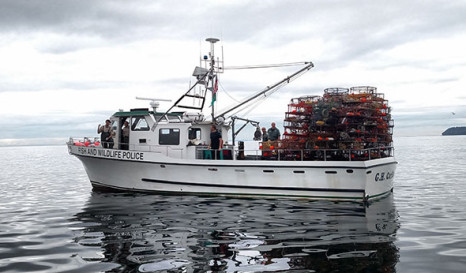 WDFW seizes nearly 700 illegal crab pots