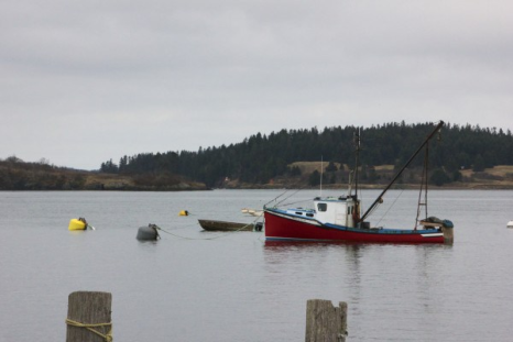 A boat sits at its mooring Thursday off downtown Lubec.