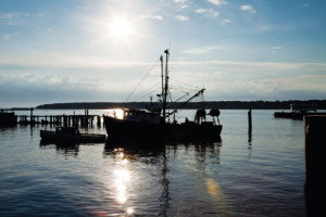 KATHARINE SCHROEDER PHOTO The Miss Nancy fishing boat moves through Greenport Harbor.