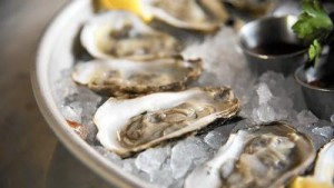 cgnews-gallery-where-are-the-oysters-20160107