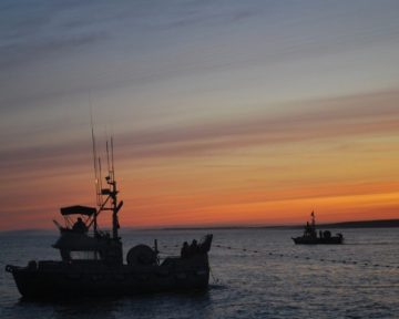 05salmon-fishing-sunset-in-egegik-fishery