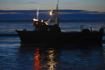 upper cook inlet fishing