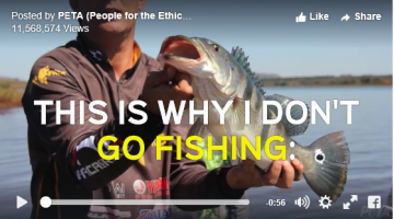 peta anti fish video