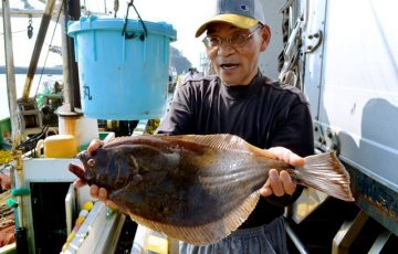 fukushima flounder test fishing