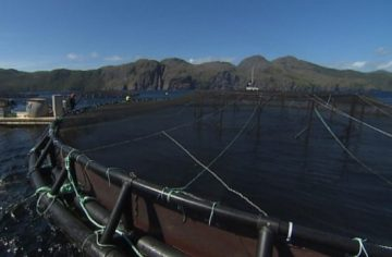nl-aquaculture-fish-farming-cage-open-water-20130927