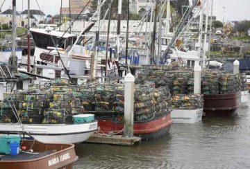 fishing boats sit in Eureka