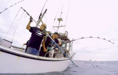 6abd0129c3c96 Wicked Tuna  – fisherynation.com