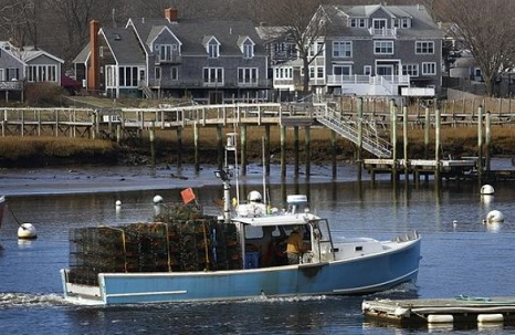 North Atlantic Right Whale: Fishing closure looms over South Shore lobstermen