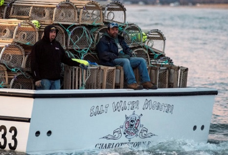 An early start to a late setting day for P.E.I.'s lobster fishermen