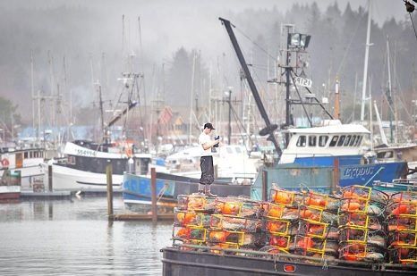 Crabbing commences: Rich fishery attracts out-of-area boats
