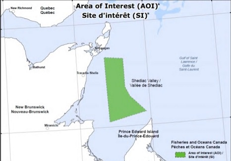 P.E.I. Fishermen's Association want answers about new whale restrictions