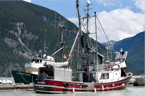 Application deadline extended for fish harvester benefits program – will have until Oct. 5th