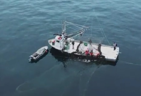 Federal Relief: Great Lakes fisheries finally get a cut of Coronavirus relief funds