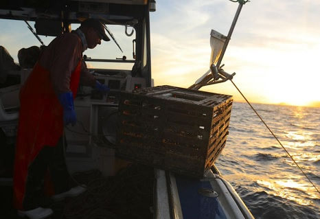 Lobsterman: A day in the life