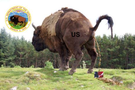 US Buffalo