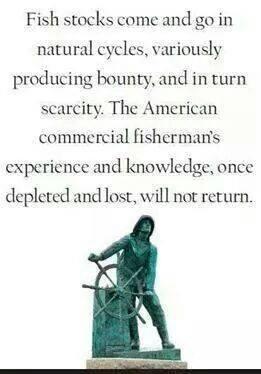 Fish Reallity