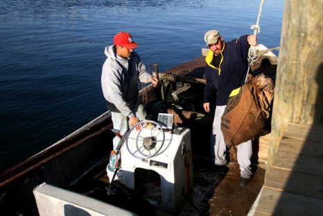 adam toler unloads oysters pass christian harbor