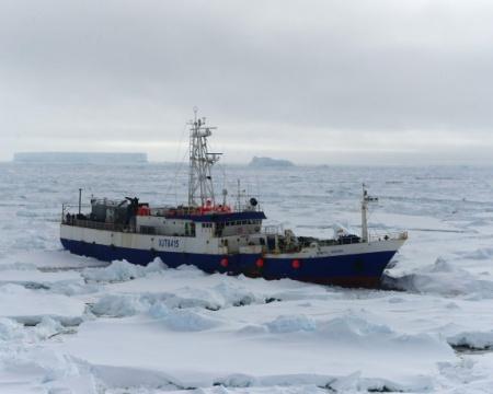 antarctic chiertan