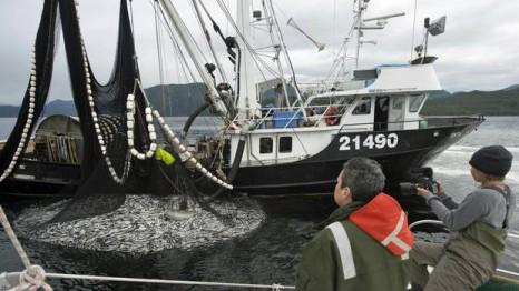 web-bc-herring-fishery23