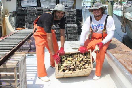 stone crab season, kevin wadlow
