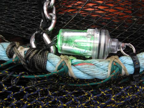 NET--fishlights