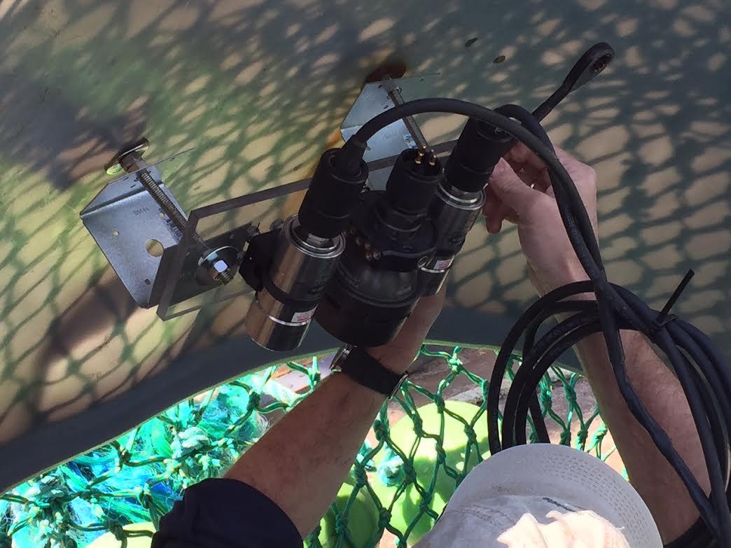 smast 10 mounting camera-light set up
