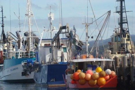 nsw fisheries reforms
