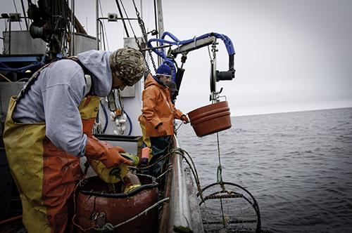 Crab-fishermen