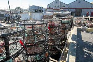 crab pots idle