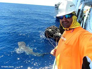 keith_whale_shark_credited_keith_davis_family_1_533394