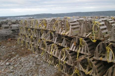 destroyed lobster traps