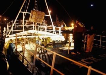 image shetland
