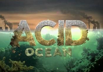 ocean-acidification-alarm