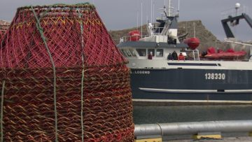 crab-pots-and-boat-in-port-de-grave-fishery-nets
