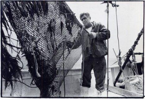shrimp nc big deal history