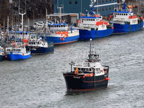 Eastern Canada's Fishing Industry: An example of Perseverance and Prosperity