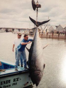 bluefin-5