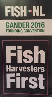fish-nl-gander