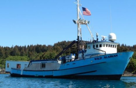 Before she was Wild Alaskan, she was the F/V Shaman – and she ruled the King Crab fishery