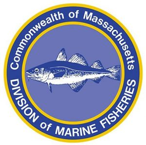 Continuously updated for Mass fishing regulations