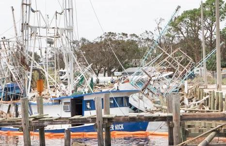 'Ain't no hurricane going to stop Joe Patti's' – Shrimp boat captains docked behind Joe Patti's devastated